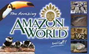 amazon world iow